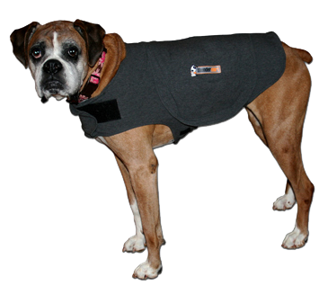 Thunder Shirt Dog T Shirt Design Database