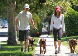 Justin+Jessica+walk+their+dogs