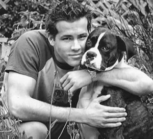 ryan reynolds and boxer